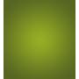 icon-park-schastye